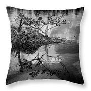 Everglades 0346 Throw Pillow