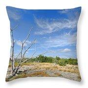 Everglades Coastal Prairies Throw Pillow