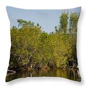 Everglades'  Egrets Throw Pillow