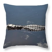 Everglades Gator Throw Pillow