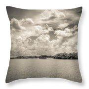 Everglades Lake 6919 Bw Throw Pillow