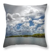 Everglades Lake 6919 Throw Pillow by Rudy Umans