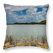 Everglades Lake 6930 Throw Pillow by Rudy Umans