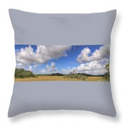 Everglades Landscape Panorama Throw Pillow