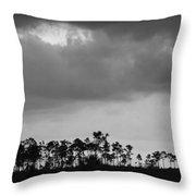 Everglades No.5  Throw Pillow