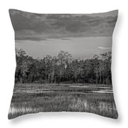 Everglades Panorama Bw Throw Pillow