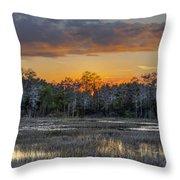 Everglades Panorama Throw Pillow