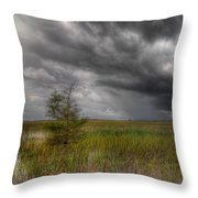 Everglades Storm Throw Pillow