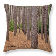 Evergreen Infinity Throw Pillow