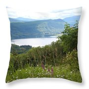 Evergreen Overlook Throw Pillow