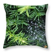 Evergreen Rain Throw Pillow