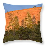 Every Tree In Its Shadow Throw Pillow by Christine Till