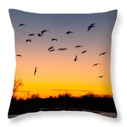 Every Which Way Throw Pillow