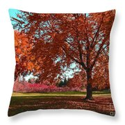Every Year I Miss Autumn After It Is Over Throw Pillow
