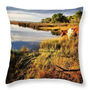 Everybody In Da Pool-cannonball Throw Pillow
