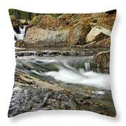 Everything Flows Throw Pillow