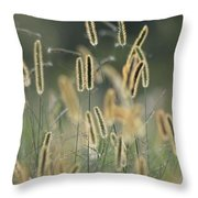 Everything In Nature Has A Reason Throw Pillow