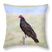 Everything Is Beautiful Maybe Throw Pillow