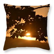 Everything Is Okay Throw Pillow