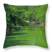 Everywhere Green Throw Pillow