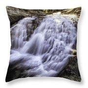 Evolution Waterfall Throw Pillow