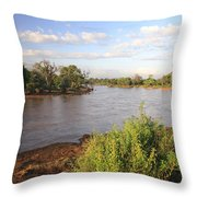 Ewaso Nyiro River Throw Pillow