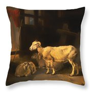 Ewe And Lambs Throw Pillow