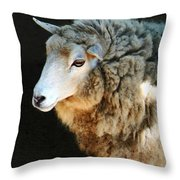 Ewe Are So Beautiful Throw Pillow
