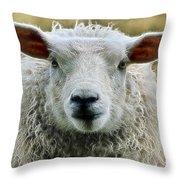 Ewe's Just Fluffy Throw Pillow