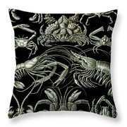 Examples Of Decapoda Kunstformen Der Natur Throw Pillow