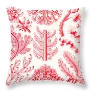 Examples Of Florideae From Kunstformen Der Natur Throw Pillow by Ernst Haeckel