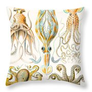 Examples Of Various Cephalopods Throw Pillow