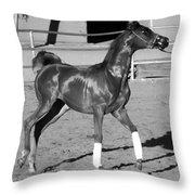 Exercising Horse Bw Throw Pillow