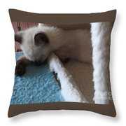 Exhausted Ivory Throw Pillow