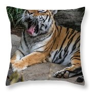 Exhausting Day Throw Pillow