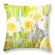 Exodus 33 18 Throw Pillow