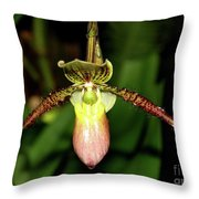 Exotic Beauty Throw Pillow