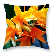 Exotic Orange Throw Pillow