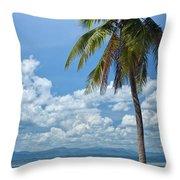 Exotic Palm Tree Throw Pillow