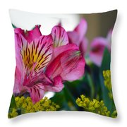 Exotic Pink Throw Pillow