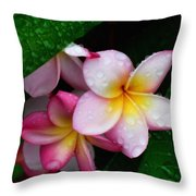 Exotic Tears  Throw Pillow
