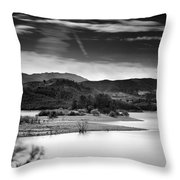 Expectant Throw Pillow
