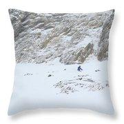 Expert Chutes Throw Pillow