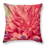Exploding Pink Flower Throw Pillow