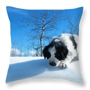 Exploration Throw Pillow