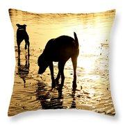 Exploring At Sunset Throw Pillow