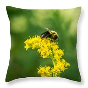 Exploring Goldenrod 2 Throw Pillow