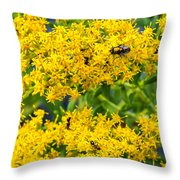 Exploring Goldenrod 5 Throw Pillow