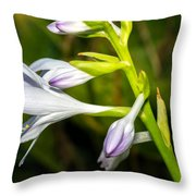 Exploring Hostas Throw Pillow