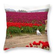 Exploring The Tulip Fields Throw Pillow